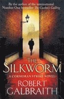 bokomslag The Silkworm