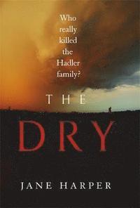bokomslag Dry