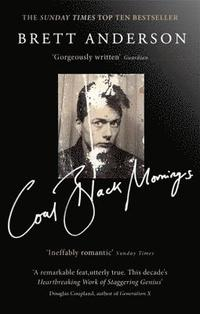 bokomslag Coal Black Mornings