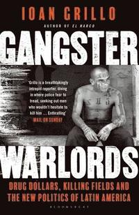 bokomslag Gangster Warlords: Drug Dollars, Killing Fields, and the New Politics of Latin America