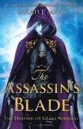 bokomslag Assassins blade: Throne of Glass Novellas