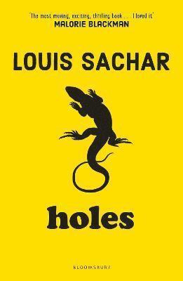 bokomslag Holes