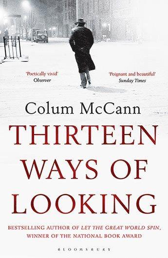 bokomslag Thirteen Ways of Looking