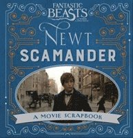 bokomslag Fantastic Beasts and Where to Find Them - Newt Scamander