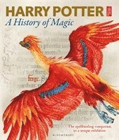 bokomslag Harry Potter - A History of Magic: The Book of the Exhibition