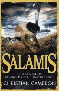 bokomslag Salamis