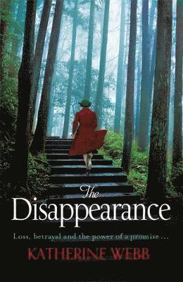bokomslag The Disappearance
