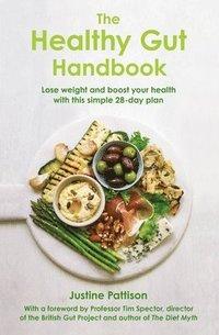 bokomslag The Healthy Gut Handbook