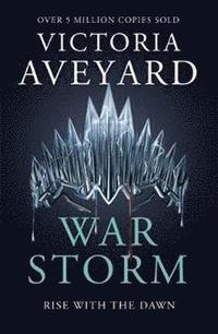 bokomslag War Storm
