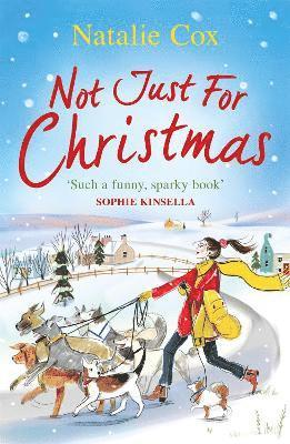 bokomslag Not Just for Christmas