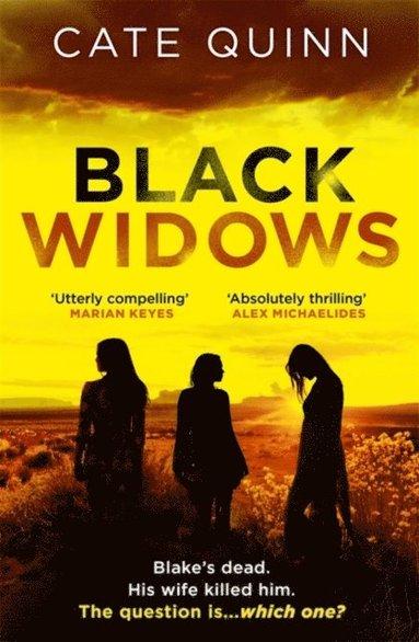bokomslag Black Widows