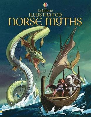bokomslag Illustrated norse myths