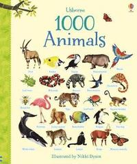 bokomslag 1000 Animals