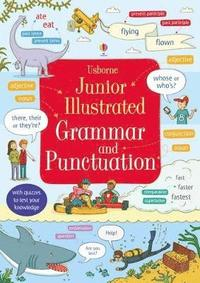 bokomslag Junior Illustrated Grammar and Punctuation