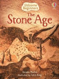bokomslag The Stone Age