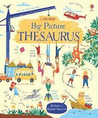bokomslag My Big Picture Thesaurus