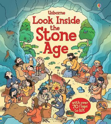 bokomslag Look Inside the Stone Age