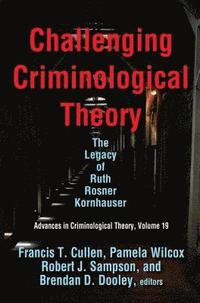 bokomslag Challenging Criminological Theory