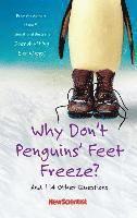 bokomslag Why Dont Penguins Feet Freeze