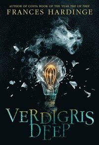 bokomslag Verdigris Deep