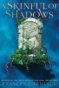 bokomslag A Skinful of Shadows