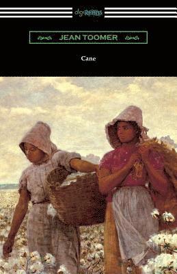 bokomslag Cane