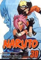 bokomslag Naruto, Vol. 30