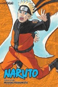 bokomslag Naruto (3-in-1 Edition), Vol. 19