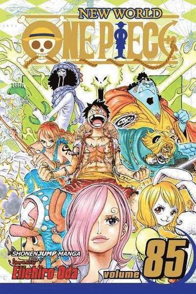 bokomslag One Piece, Vol. 85