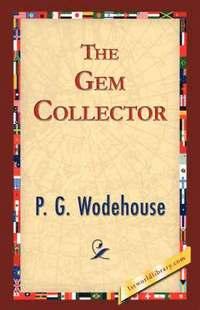 bokomslag The Gem Collector