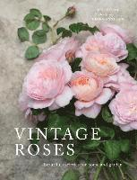 bokomslag Vintage Roses
