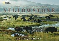 bokomslag Yellowstone