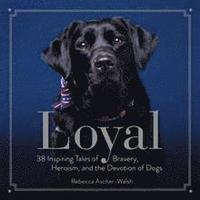 bokomslag Loyal