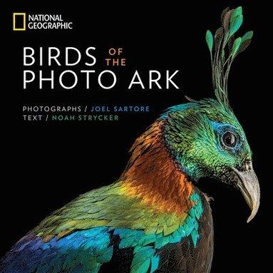 bokomslag Birds of the Photo Ark