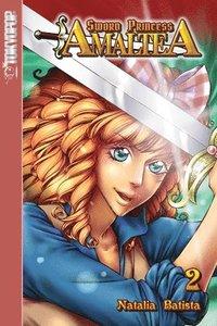 bokomslag Sword Princess Amaltea Volume 2