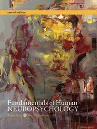 bokomslag Fundamentals of Human Neuropsychology