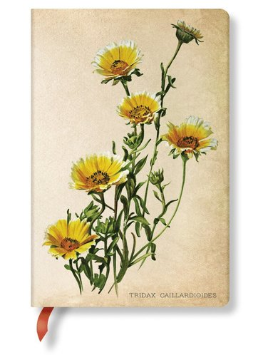 Anteckningsbok Paperblanks Mini linjerad - Daisies