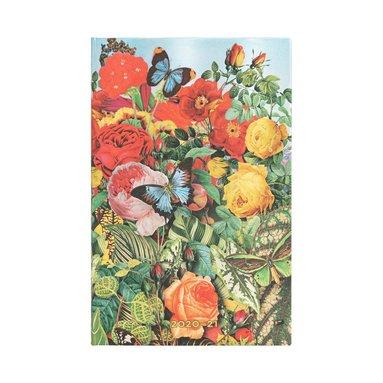 Kalender 2020-2021 18 månader Maxi 18 månader Butterfly Garden 1