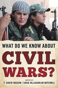 bokomslag What Do We Know about Civil Wars?