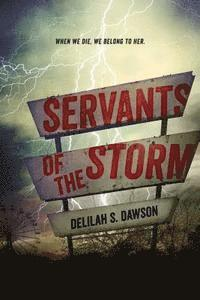 bokomslag Servants of the Storm