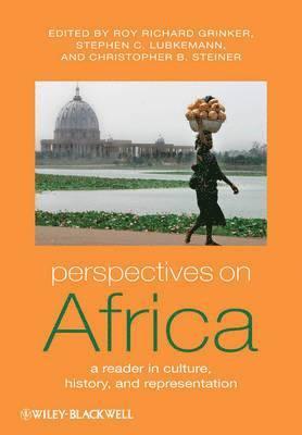 bokomslag Perspectives on Africa