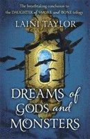 bokomslag Dreams of Gods and Monsters