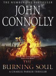 bokomslag Burning soul