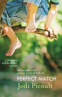bokomslag Perfect Match