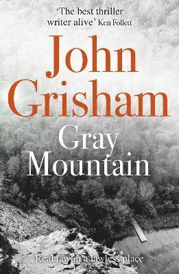 bokomslag Gray mountain