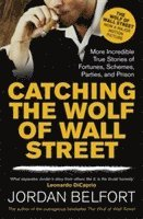 bokomslag Catching the Wolf of Wall Street