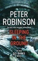 bokomslag Sleeping in the Ground