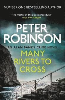 bokomslag Many Rivers to Cross