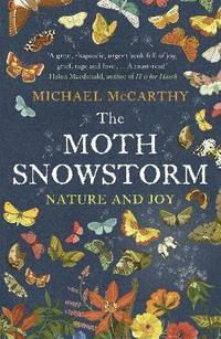 bokomslag The Moth Snowstorm