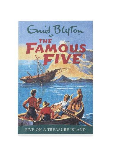 bokomslag Famous Five On A Treasure Island